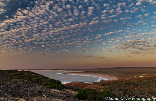 kalbarri westernaustralia australia au red bluff lookout sunset clouds ocean indian canon 6d view cirrocumulus mackerel beach cliffs
