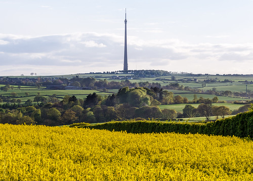 flower architecture landscape countryside blossom photograph emleymoortransmitter