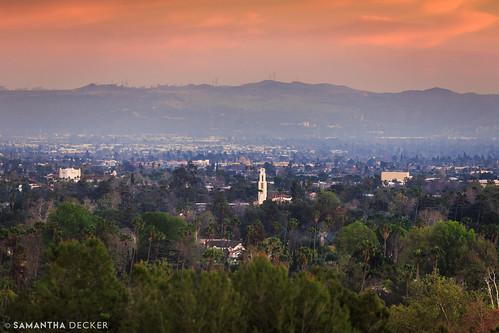 california ca sunrise hotel socal pasadena canonef135mmf2lusm canoneos6d samanthadecker langhamhuntington