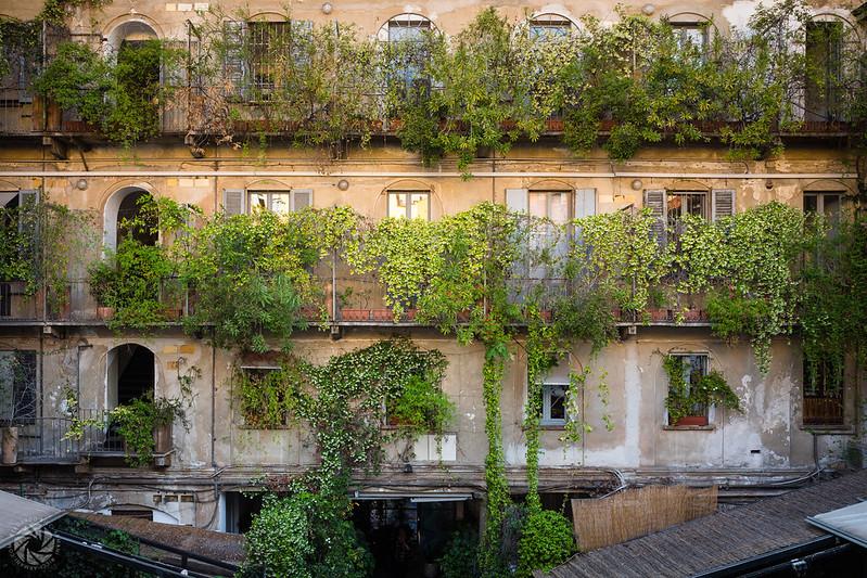 The Rear Window (10 Corso Como)