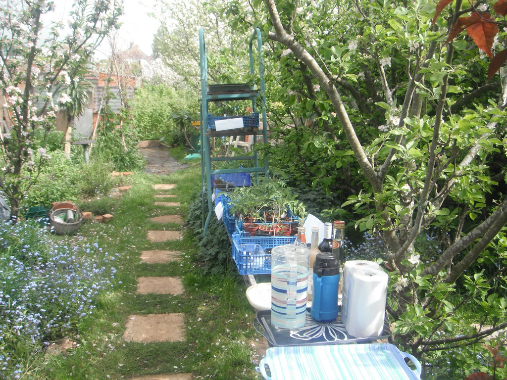 Allotment pathway