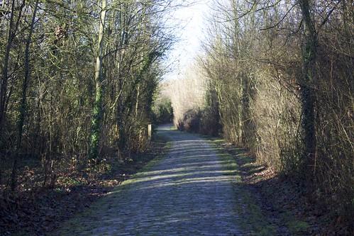Le Parc départemental de la Haute-Île