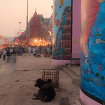 Varanasi_Daybreak_January 2015