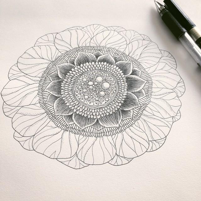 1 hour drawing flower #flower #doodle #drawings #beautiful #botanical #art #artist #zenart #zia #Zendoodle #zentangle #creative