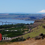 Sat, 05/02/2015 - 11:11 - View of Maryhill and Mt Hood. Watch video of this road trip bit.ly/rvwt-lower-columbia.