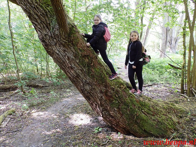 2016-05-14        Pinkster-           wandeltocht        20 Km (26)