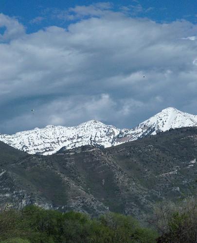 trees cliff snow rock utah spring wasatch ridge paraglider steep orem squawpeak sharonpark littlerockcanyon provopeak lebarodea eastprovopeak