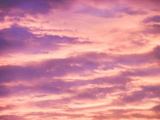 Maple Grove Sunrise