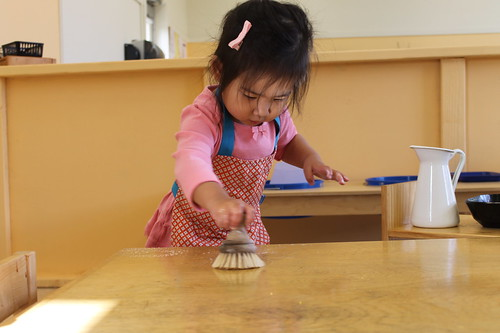 Toddler - Washing a Table