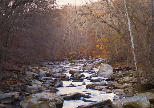 autumn trees fall nature water leaves landscape rocks outdoor rockcreekpark rockcreek
