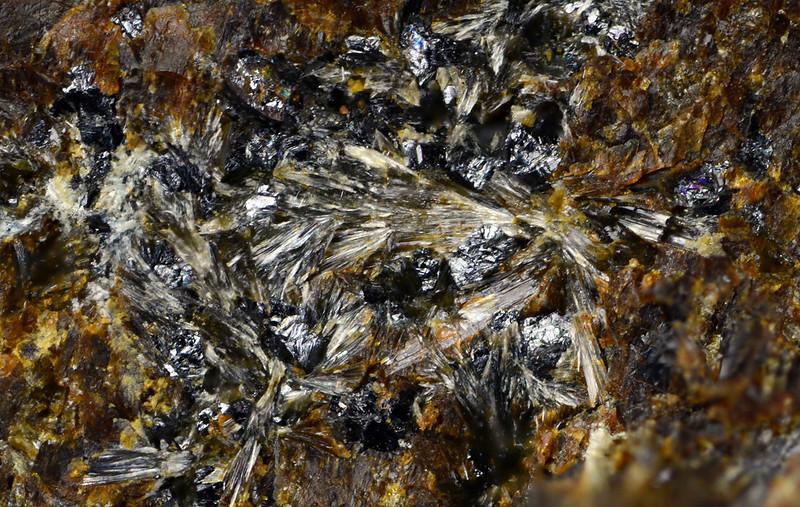 プロトフェロ直閃石 / Proto-ferro-anthophyllite