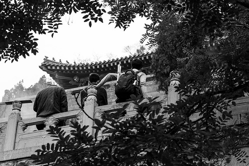 canon eos 100d 50mm street urban city outside outdoor people bw bnw black white blackwhite blackandwhite monochrome asia asian china chinese jinan temple buddha religion religious buddhism buddhist old ancien traditional history historical tradition jinanshi shandongsheng chine cn specific angle view window aperture tree group friends together rest men young back backside backpack roof pavillon vegetation incense sticks bottle tired relax quite frame