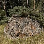 Rock along Specimen Creek Trail