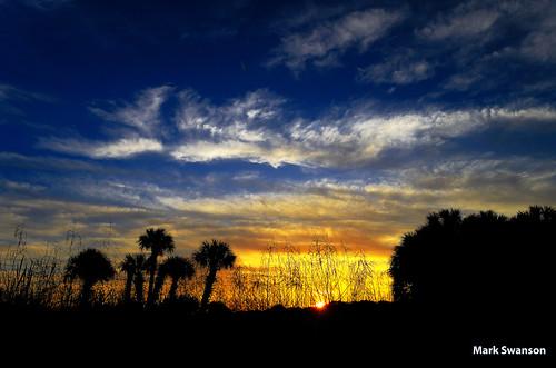 park blue trees sky sun lake color nature yellow clouds sunrise orlando nikon bright florida palm marsh 1855mm polarizer sanford jesup d5100