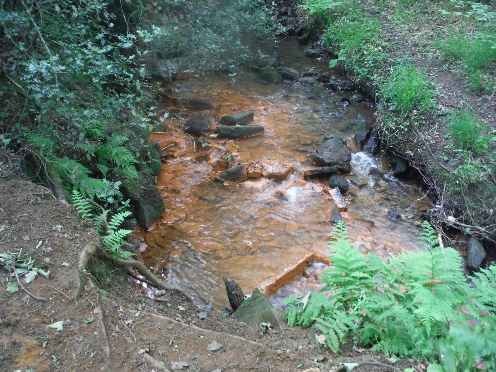 Ochre-coloured Stream, Ecclesall Woods SWC Walk 267 - Sheffield Circular (via Porter, Limb, Sheaf and Gleadless Valleys)