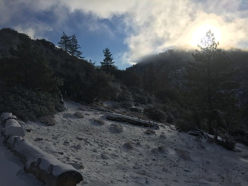 PCT: Day 31