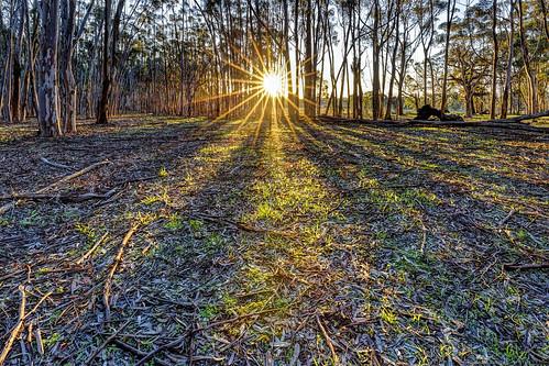 sunset australia melbourne greenvale canon1635l canoneos6d woodlandshistoricpark sunburyshow2015
