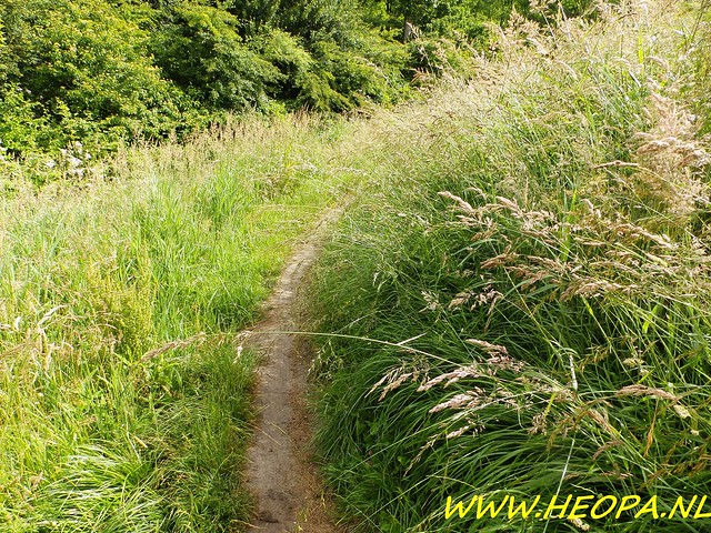 2016-06-18 Plus 4 daagse Alkmaar 4e dag 25 Km (39)