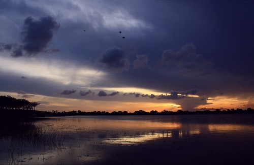 sunset usa cloud lake reflection nature beauty skyscape landscape spring still unitedstates natural florida calm watersedge tranquil cloudscape floridaeverglades southflorida sawgrass grackles lakescape palmbeachcountyflorida artisticsunsetphotography stormyspring