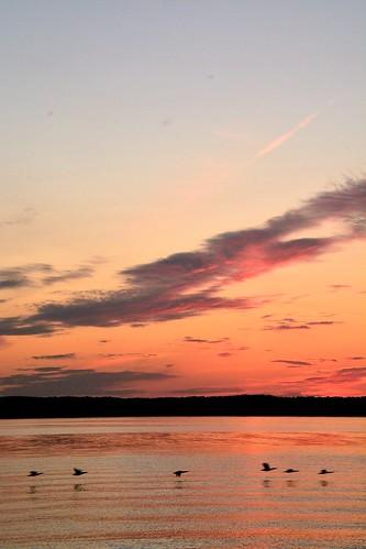 pink sunset red favorite orange lake mi spring colorful ducks six inland spontaneous fernridge unplanned torchlake may2015