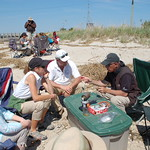 USFWS Northeast Regional Director Wendi Weber at red knot bird banding, Fortescue Beach (NJ)