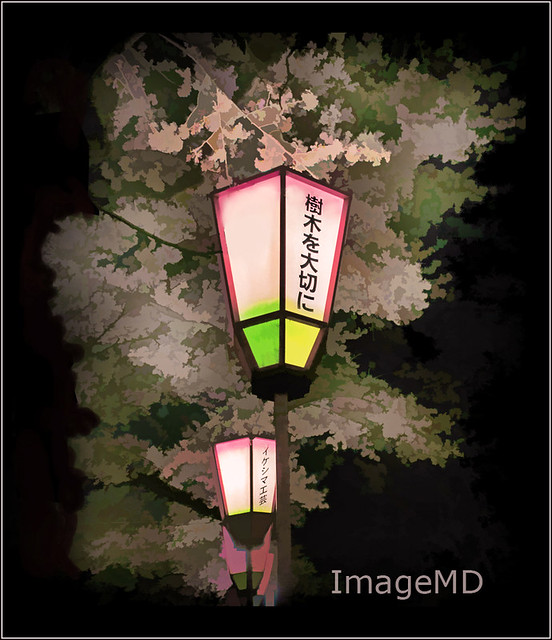 Kenrokuen Lights