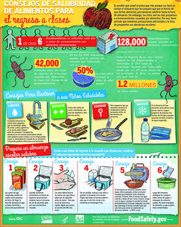 Back to School Food Safety - Spanish