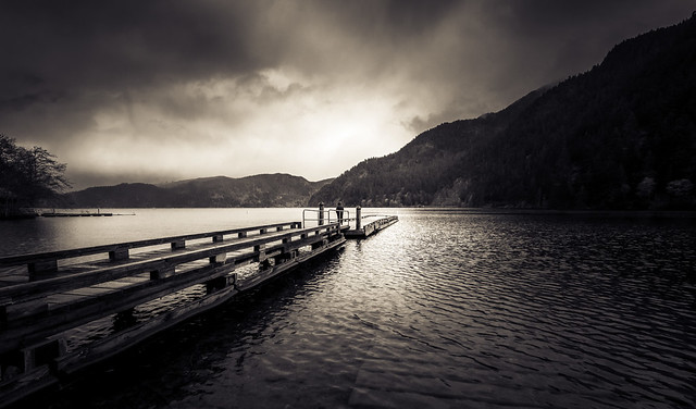 Lake Crescent Dock - Duotone