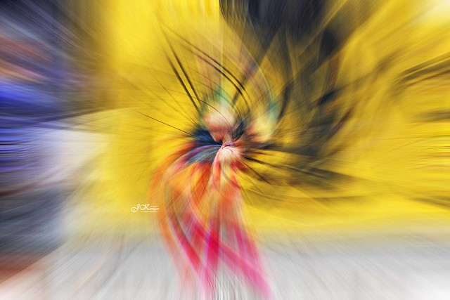 ~ twirling of the colours at the Hotel De Ville ~