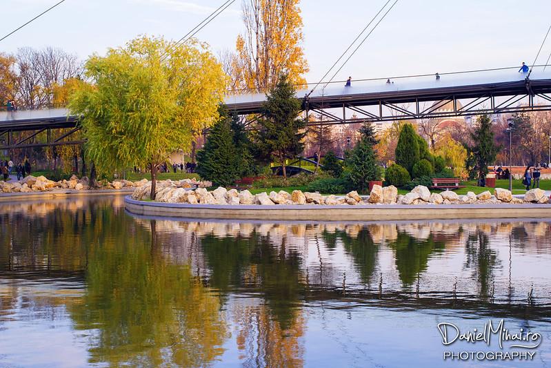 Autumn reflections by Daniel Mihai