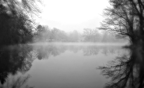 flickr foto photo image capture picture photography sony beauty beautiful fog foggy nature landscape calm relax relaxation reflection quiet peace peaceful pond lake water trees dark spring bw massachusetts sonydscw300 blackandwhite natureporn naturelove naturelover naturephotography darkdays plainvillepond plainvillemassachusetts newenglandfog newengland