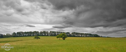 storm rain clouds nikon australia pasture newsouthwales dorrigo rockycreek nswnorthcoast d700 davidnaylor andthenitrained