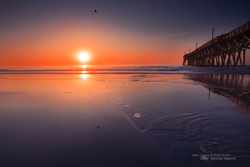 travel usa reflection bird sunrise photography dawn myrtlebeach pier us spring unitedstates southcarolina wideangle fullframe atlanticocean uwa 2016 surfsidebeach photodujour canoneos6d fotodioxpro thousandwordimages dustinabbott dustinabbottnet wonderpana adobephotoshopcc tamronsp1530mmf28divcusd adobelightroomcc alienskinexposurex fotodioxpro6sendgradfilter