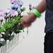 Viral Planting at ART 15