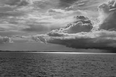 rio delle amazzoni navigazione...