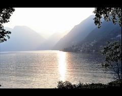Ramo del Lago di Como I