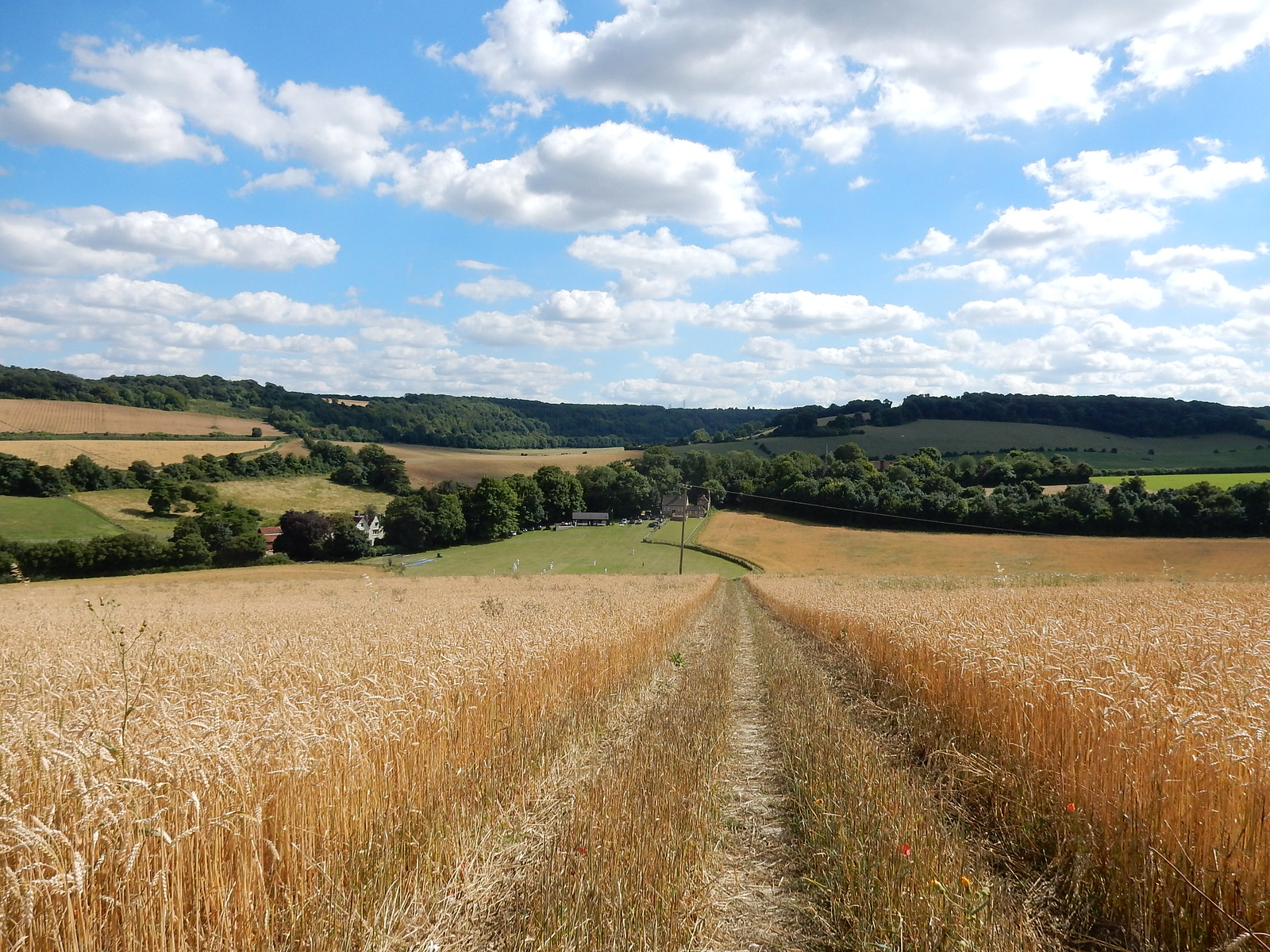 Down to Luddesdown Cuxton to Halling