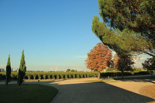 圖05.不少酒莊喜歡將葡萄園設於莊園內,方便培育管理