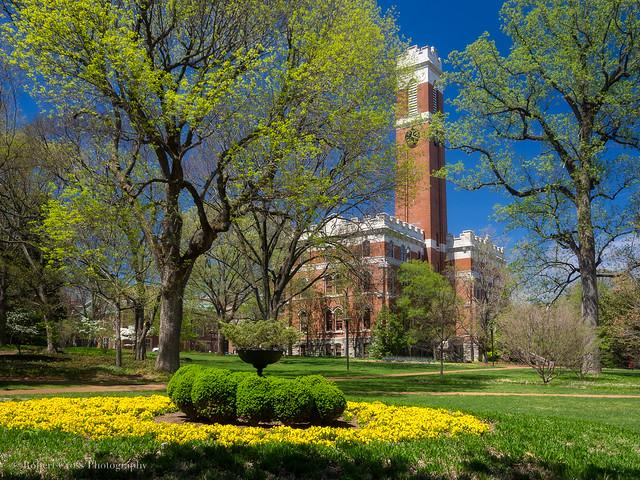 Vanderbilt Spring