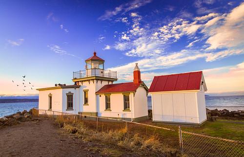 sunset lighthouse discoverypark birdbrush