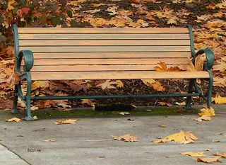 A Very Straightforward Bench