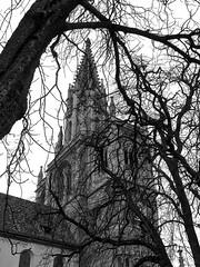 Konstanz Germany Feb 23, 2012, 7-016_edit
