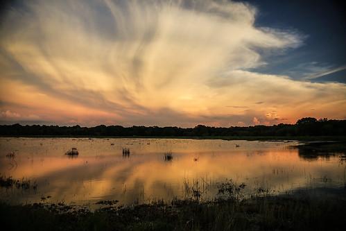 florida myakkariverstatepark uppermyakkalake water lake sunset colors clouds cloudscape grass lakeshore wyojones np