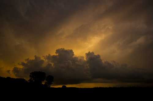 evening sunset sky clouds storm meadow trees silhouettes wideangle 1020mm sigma thegalaxy