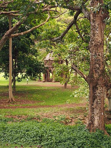 McBryde - Allerton Gardens -Joe 23 | by KathyCat102