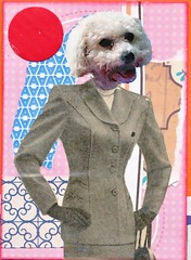 109365 dog in clothes atc