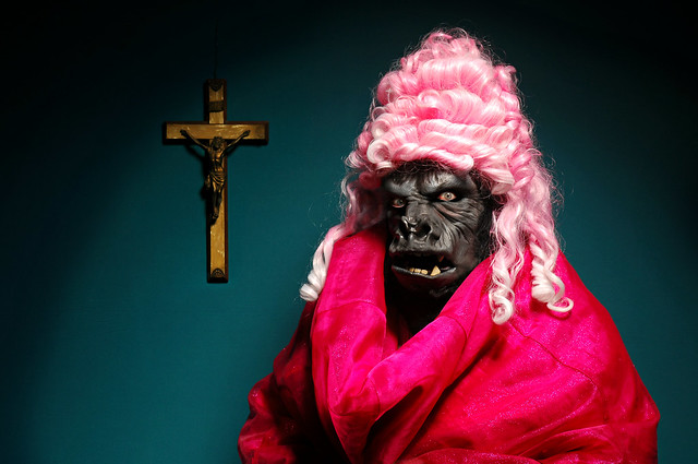 The Melancholic Ape who Loved Pink