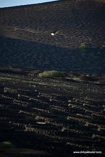 La Geria, Lanzarote   by Dirk Paessler