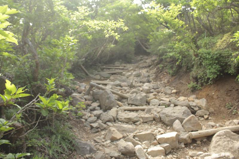 20140601-韓国岳-0078.jpg