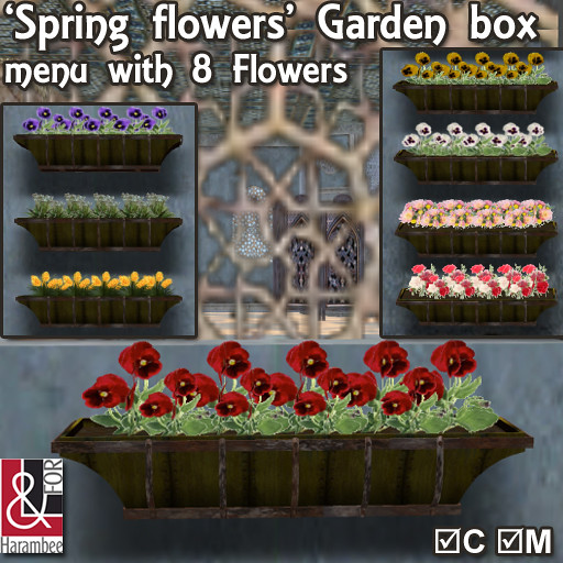 'Spring flowers' window box